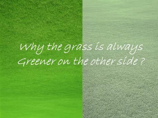 greener side